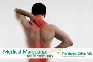 Medical marijuana for chronic pain Tampa