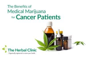 Medical Marijuana for cancer patients in Tampa